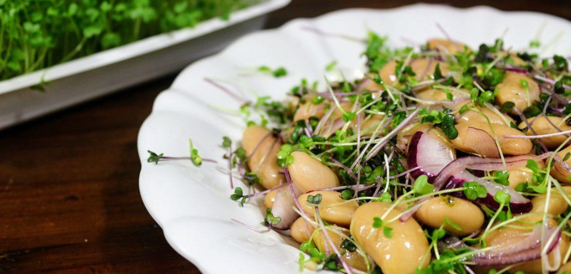 Tízperces fehérbab-saláta mikrozöld mix-szel