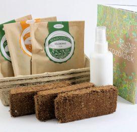 Mikrozöld ültetetőcsomagok