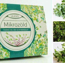 mikrozöld ültetőcsomag - fodros kel mix
