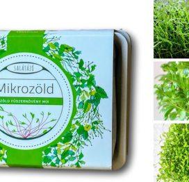 zöldfűszer ültetőcsomag