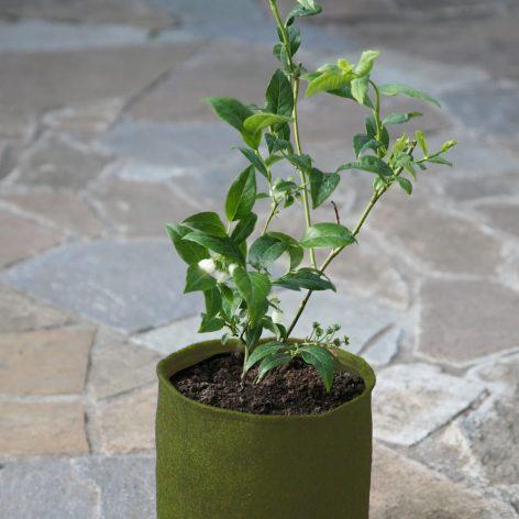 ültetőedény szövetből 5 literes