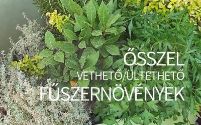 Ősszel vethető/ültethető fűszernövények