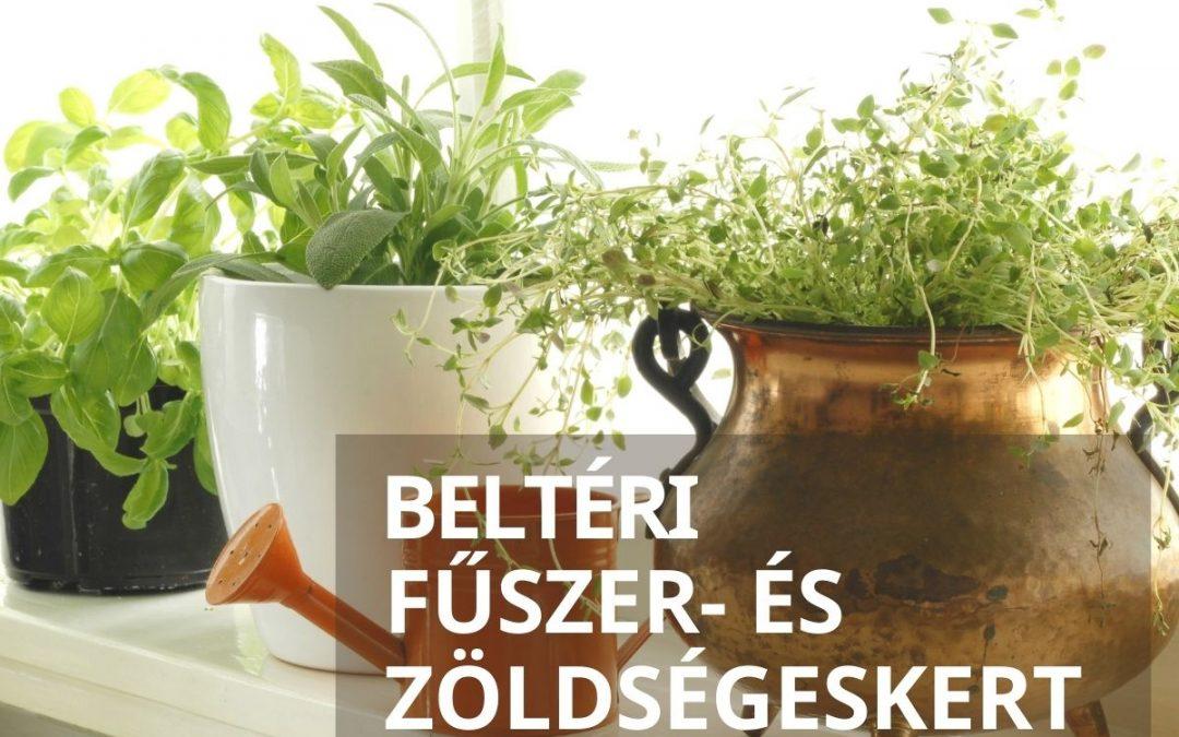 Beltéri fűszer- és zöldségeskert télen